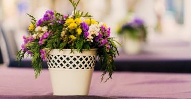 flowers-1283105_1280