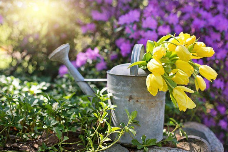 Tuinideeën voor de aankomende zomer