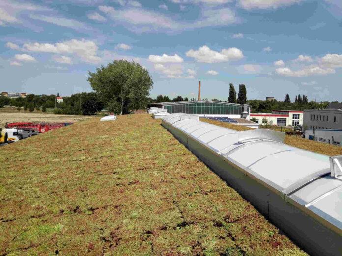 Groen dak dakkapel