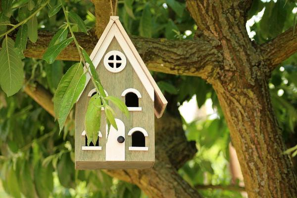 Houten vogelhuisjes maken: 4 originele voorbeelden