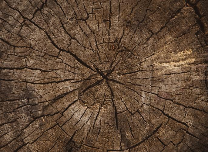 Eikenhout meubels in huis is een must!