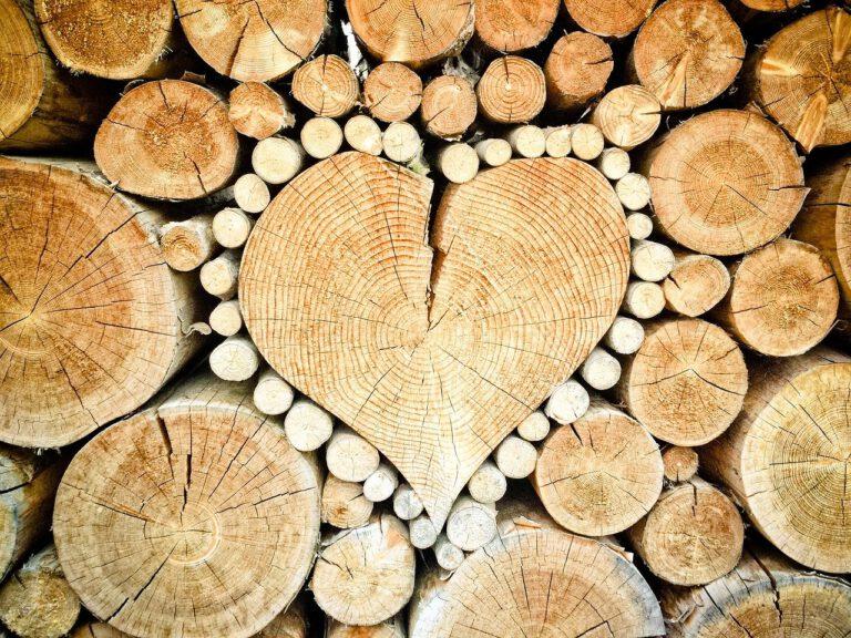 De beste manier om je houtkachel aan te steken